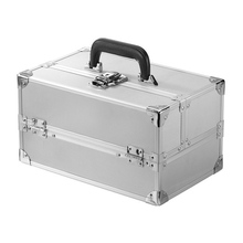 train case md silver