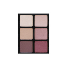 palette 6 ombretti 12gr nuance theory v